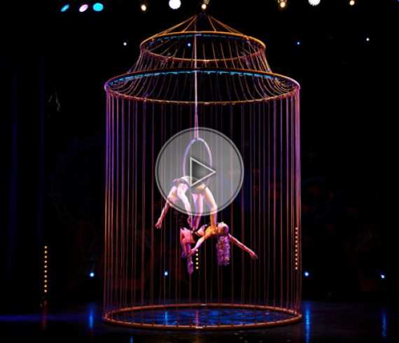 golden cage, aerial act, aerial golden cage, acrobatic birds in a cage, birds in a cage, birdcage