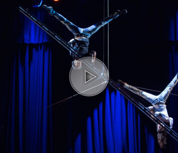 aerial ladder, acrobatic ladder act, ladder act, ladder show, ladder