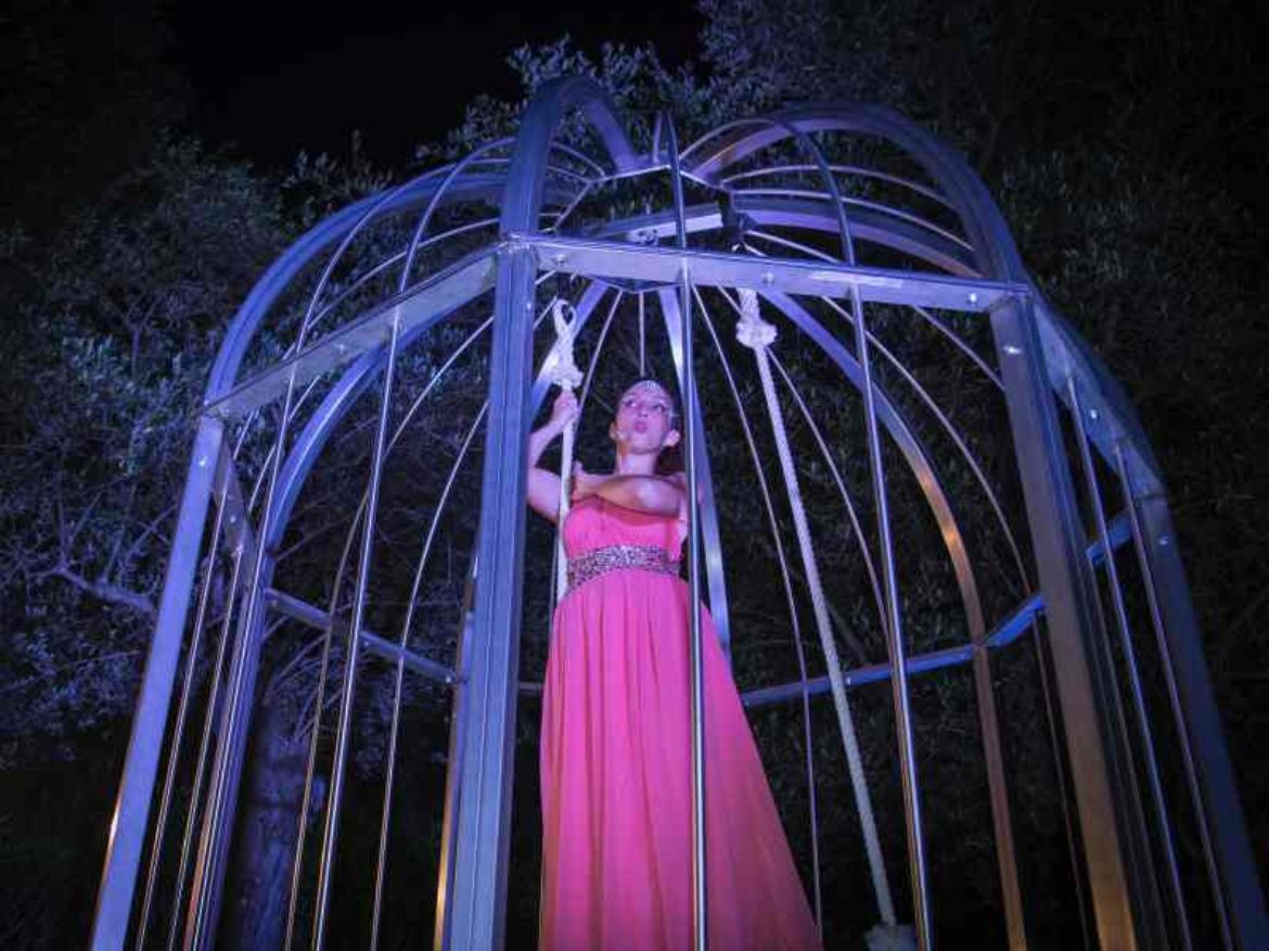 the giant birdcage, birdcage, aerial in the cage, singer on the trapeze, trapeze in the cage, ring in the cage,