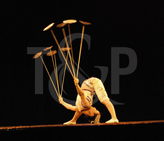 contortion, plate spinning, switzerland, artist, show, event, circus, contortionist, asian artist