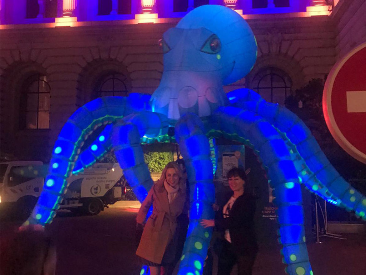 Lighted octopus, led octopus, lighted jellyfishes, led jellyfishes, sea themed event, water event themed, sea marine event, ocean event, sea show, marine show