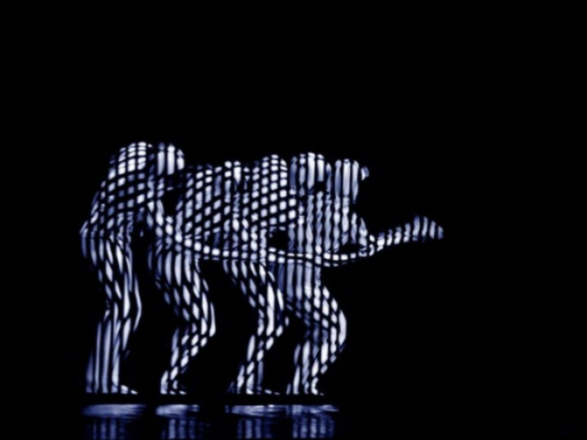 Zebra show, zebra act, zebra dance, hypnotizing dance, unusual dance, optical effect, optical effect show, optical effect dance, hypnose dance, hypnose show, zebra dancers, led dancers, blackout dancers, led dance, blackout dance