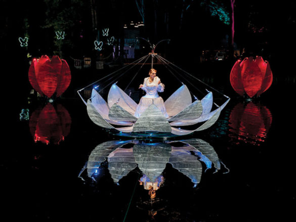 Lighted flowers, water themed event, flowers on water, flowers, water show, water event, water show, water act, flower act, flower entertainment