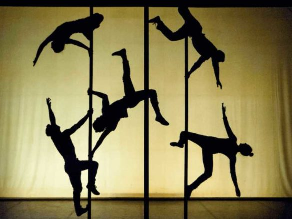 Chinese pole, pole troupe, pole group, Chinese pole group, Chinese pole troupe, dancers, dance group, dance troupe, shadow show, shadow dancers