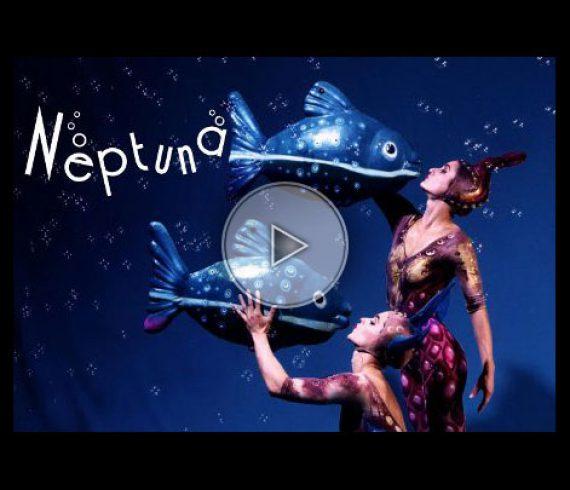 duo au trapèze, trapeze duo, fish, water, poissons, eau, mer, sea