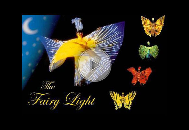 papillon, butterfly, lumière, light, nature
