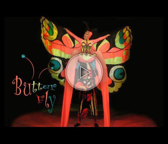 butterfly, ladybug, animals, animal, papillon, nature, animaux