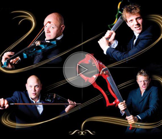 violin show, violectra, violectra harmoney, violin quatuor, violin players, violin show