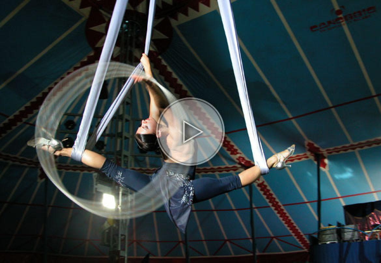 aerial tissu, tissu aérien avec hula-hoop, aerial tissu with hula-hoop, aerial act, numéro aérien