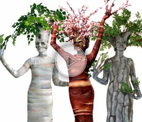living trees, nature, living flowers, flowers, nature walk about, trees performers, flower performer