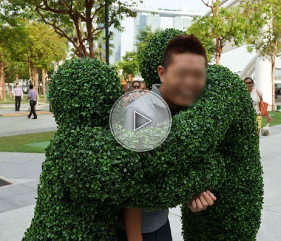 plant men, green buddies, green, vert, plantes, hommes plantes