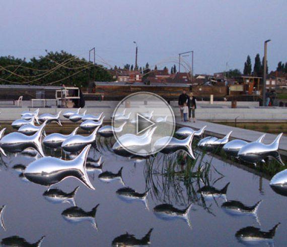 aluminium flying fishes, fishes, flying fishes, fish entertainment