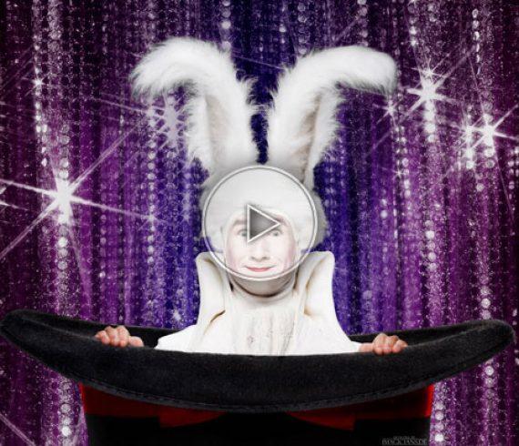 magic rabbit, alice in wonderland magic act, alice magic act, rabbit, illusions, alice in wonderland