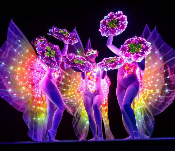 lighting dancers, light dancers, nature light dancers, nature lighting dancers, light dancing troup, light dancers