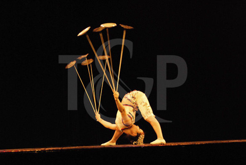 contortion, plate spinning, switzerland, artist, show, event, circus, contortionist, asian artist